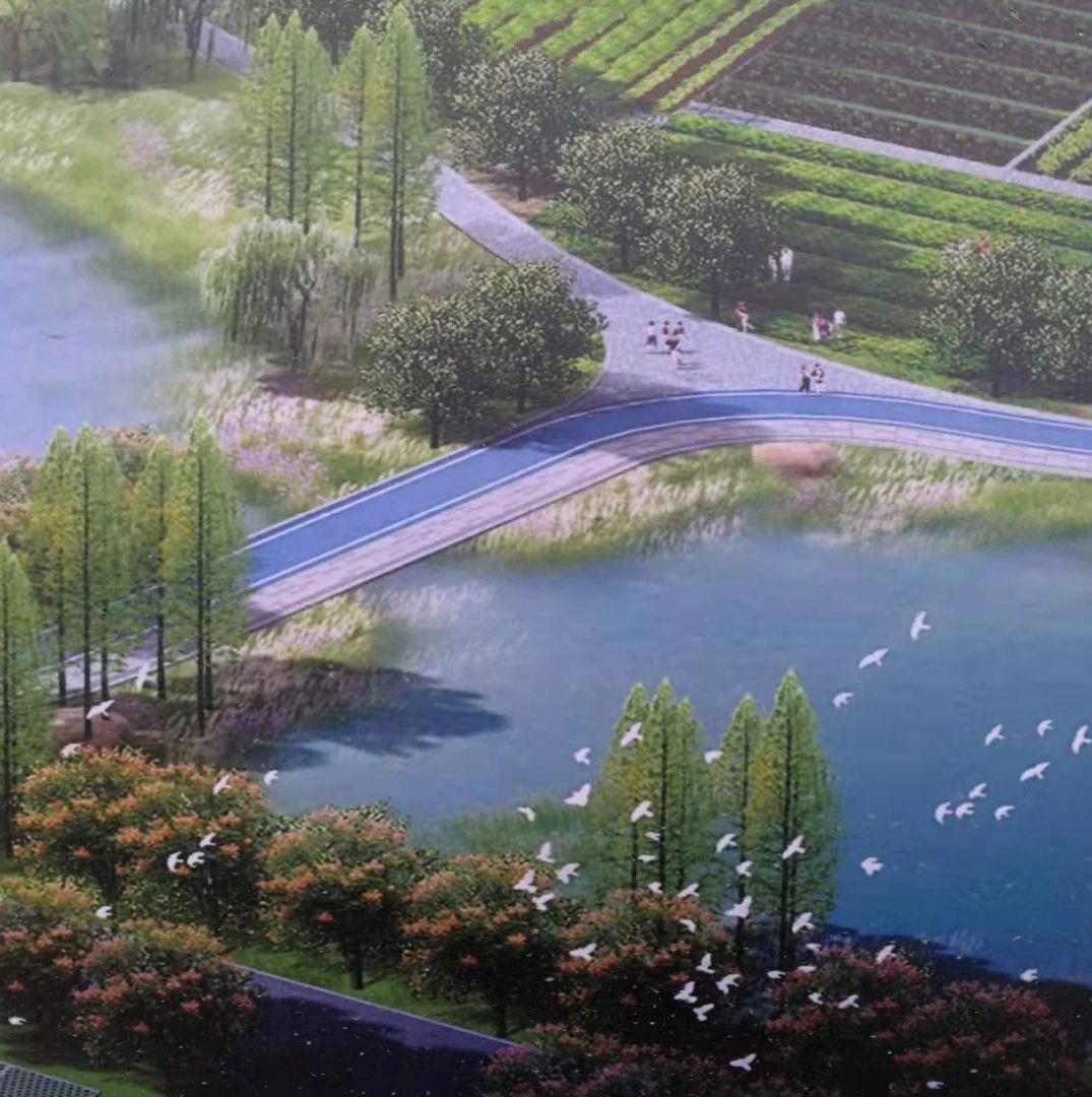 襄阳又一大型生态公园来了!