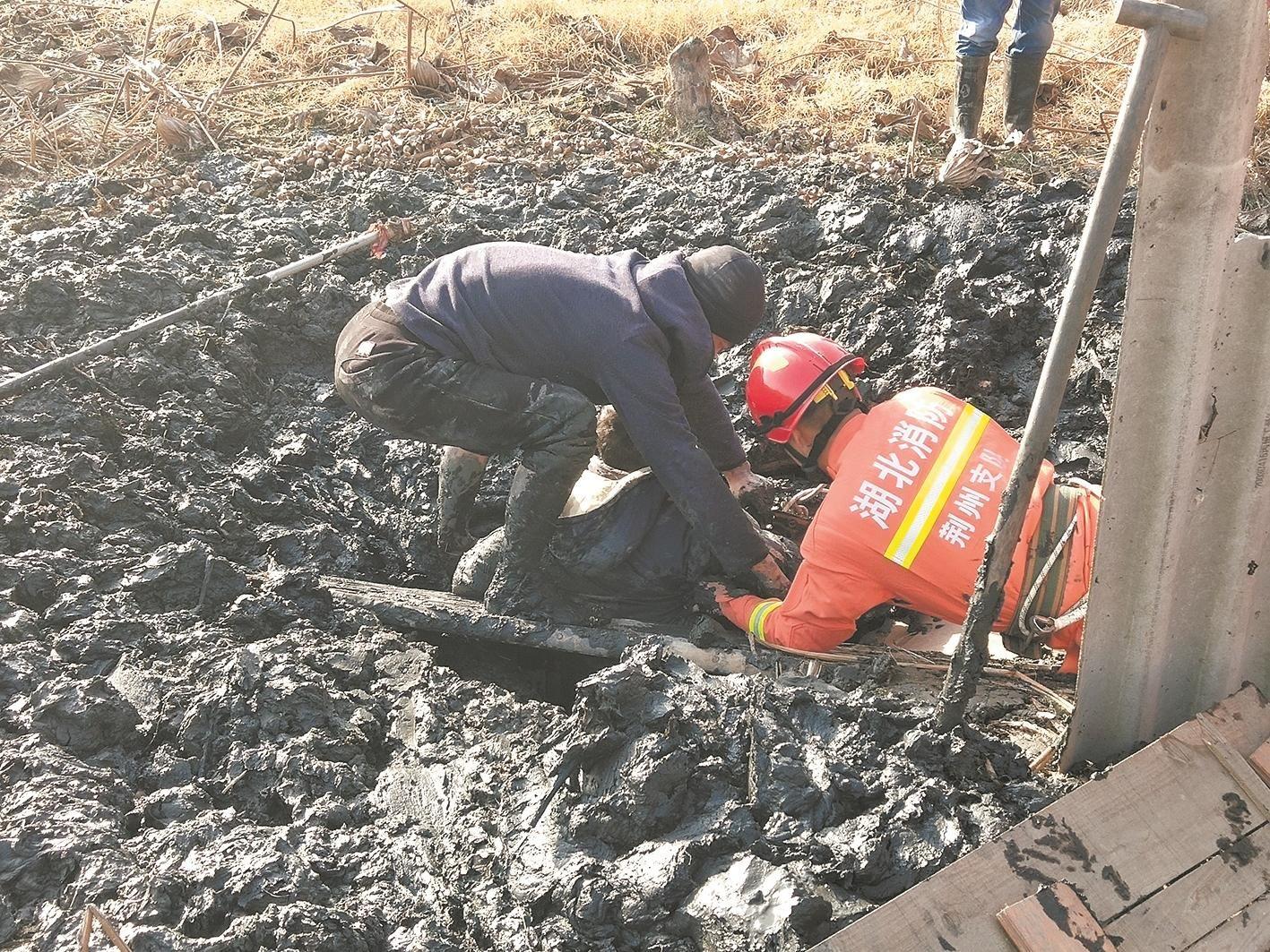 老汉挖藕身陷泥中 消防员徒手刨泥救人