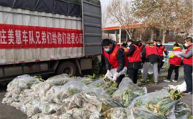 40噸萵苣送抵石家莊,他們說:這一趟來值了!