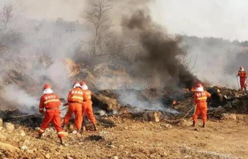 湖北森林防灭火应急演练忙不停