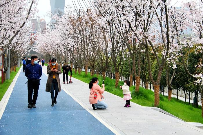 """恩施州城已建成10多个街头公园""""绿色小客厅"""""""