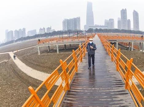 汉口江滩观芦步道修复