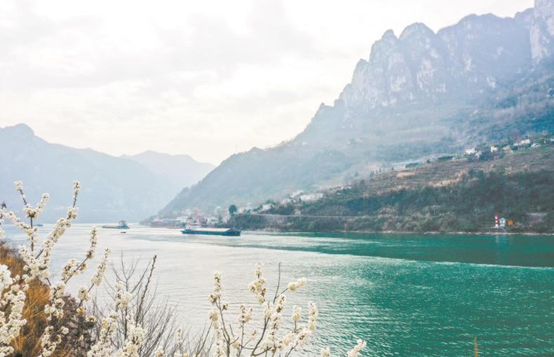 我国首部流域法《长江保护法》3月1日起施行