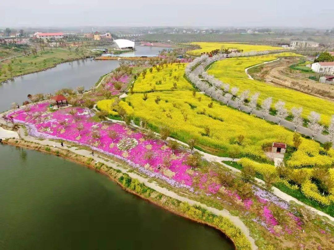 安陆:2021年首届樱花国潮美食节来了!