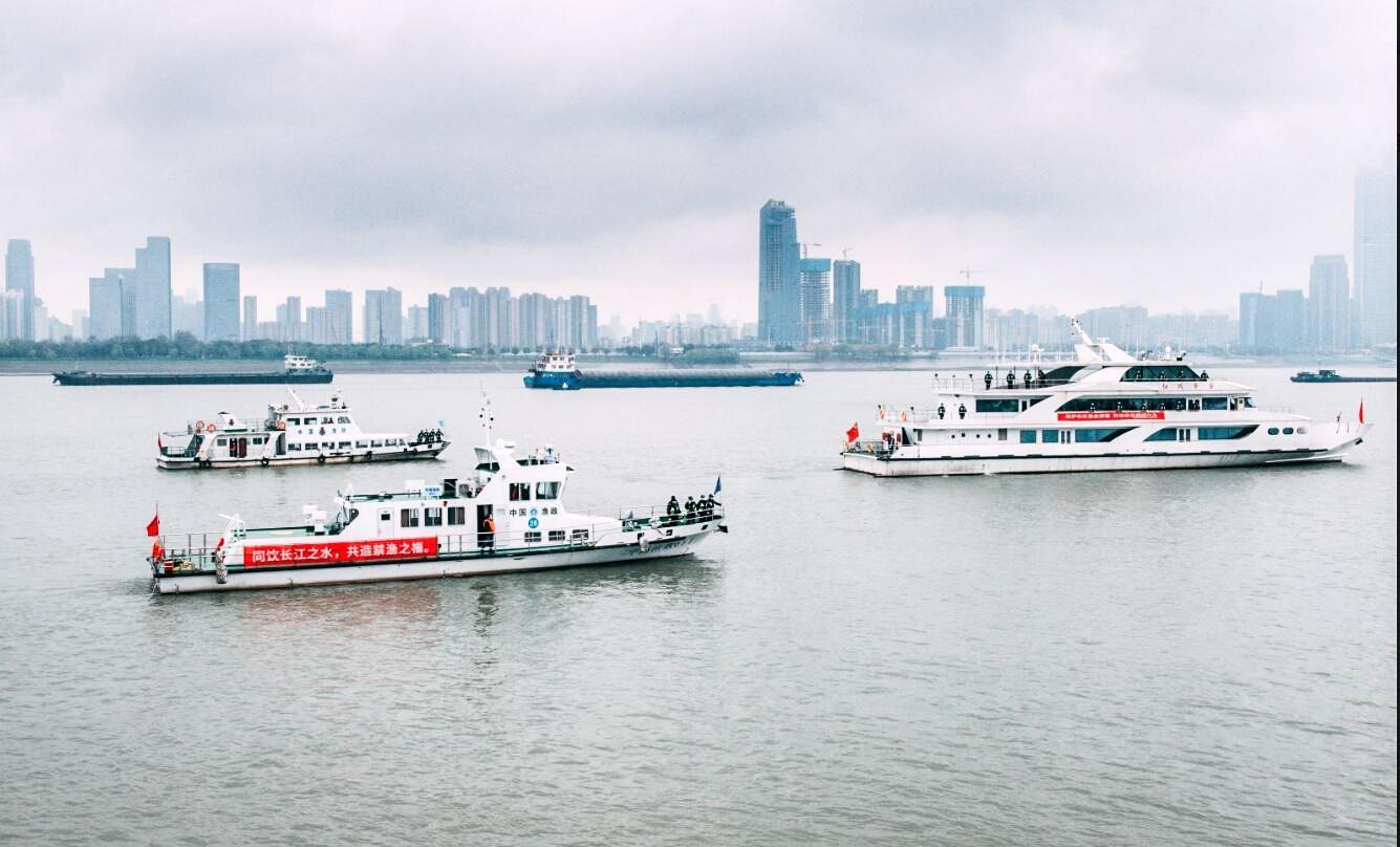武汉6条通江支流全面禁渔四个月