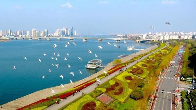 多彩汉江岸 绿色襄阳颜值高