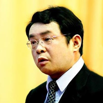 全国政协委员郑军:提出多项建议助力湖北经济重振