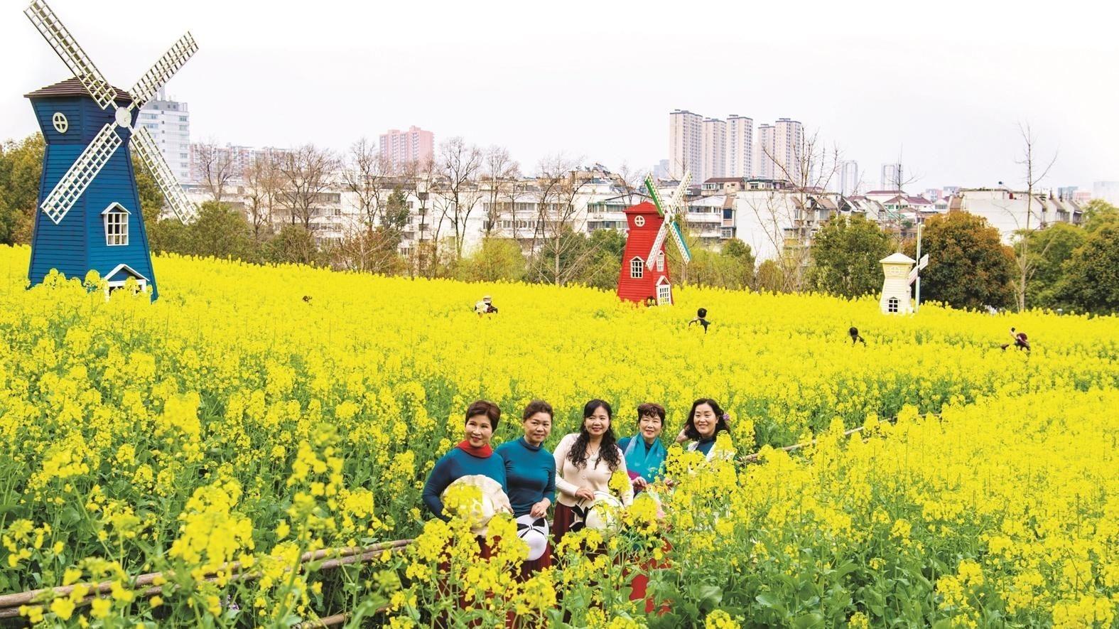 宜昌运河公园油菜花海吸引市民拍照打卡