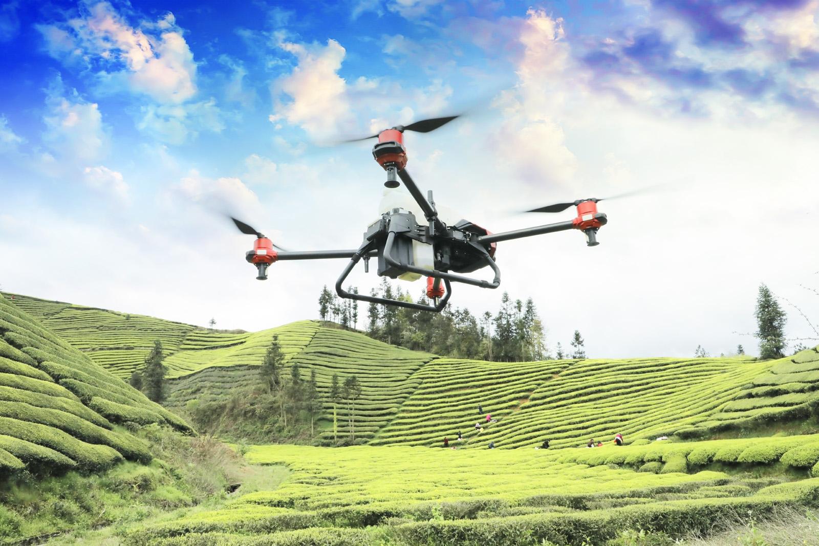 鹤峰无人机给茶园施肥