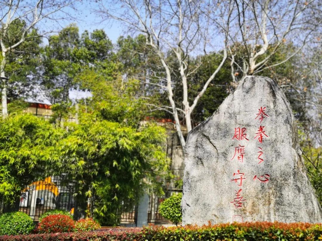 我和我的学校|武汉市武昌区丁字桥小学校长杨涛:纯真善美【74期】