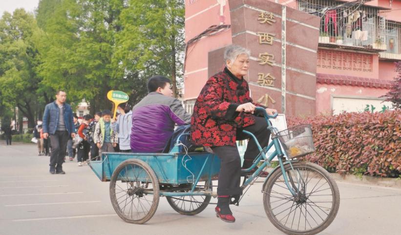 襄阳陪读婆婆三轮车上蹬出深沉的爱