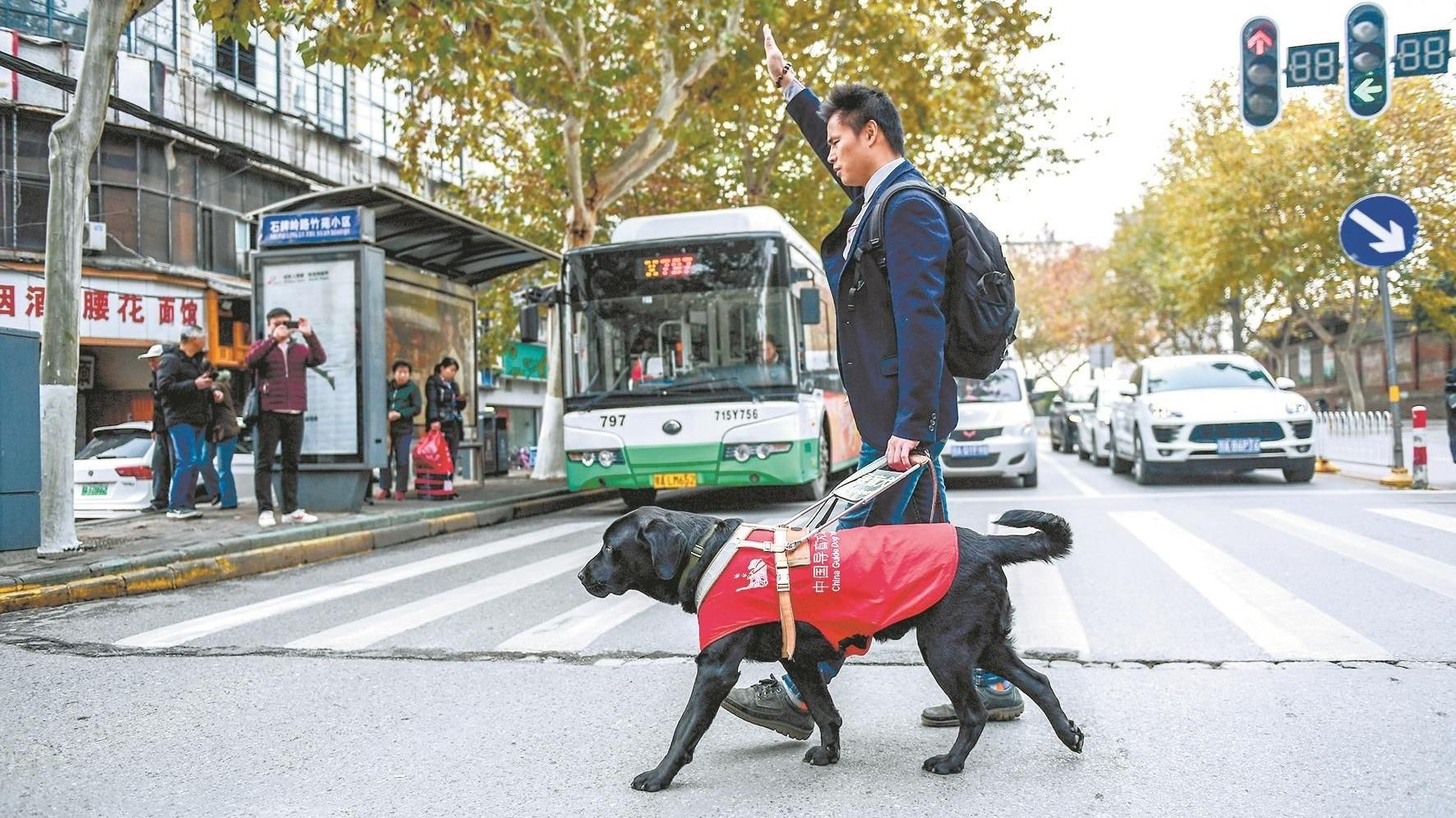 视障人士携导盲犬可坐网约车了