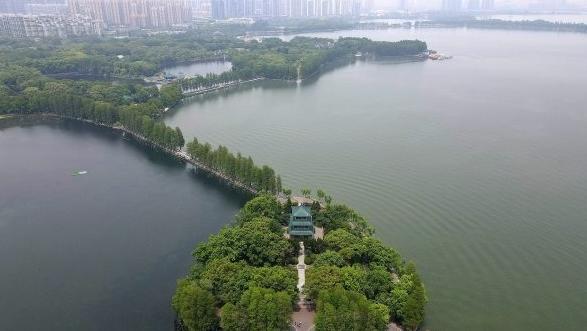 东湖绿意盎然
