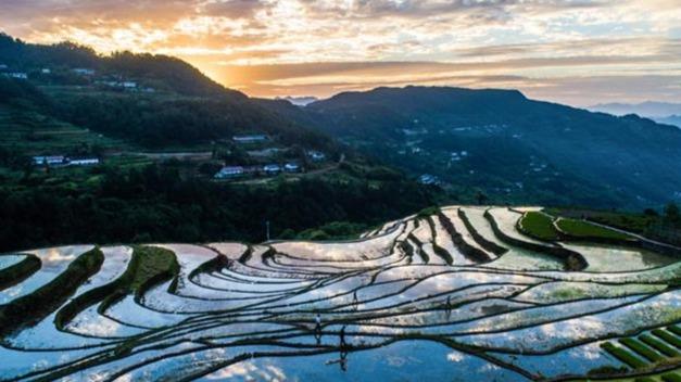 山泉稻田美了乡村