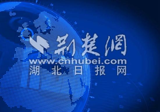 黄州区村级党组织巡察覆盖率实现100%