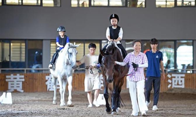 快樂暑假 與馬為伴