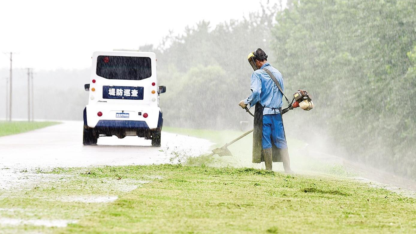 清除雜草備戰夏汛