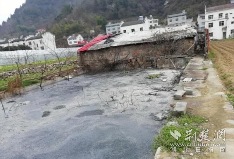 临河而建24年的养猪场熏坏村民 拆除!转运!