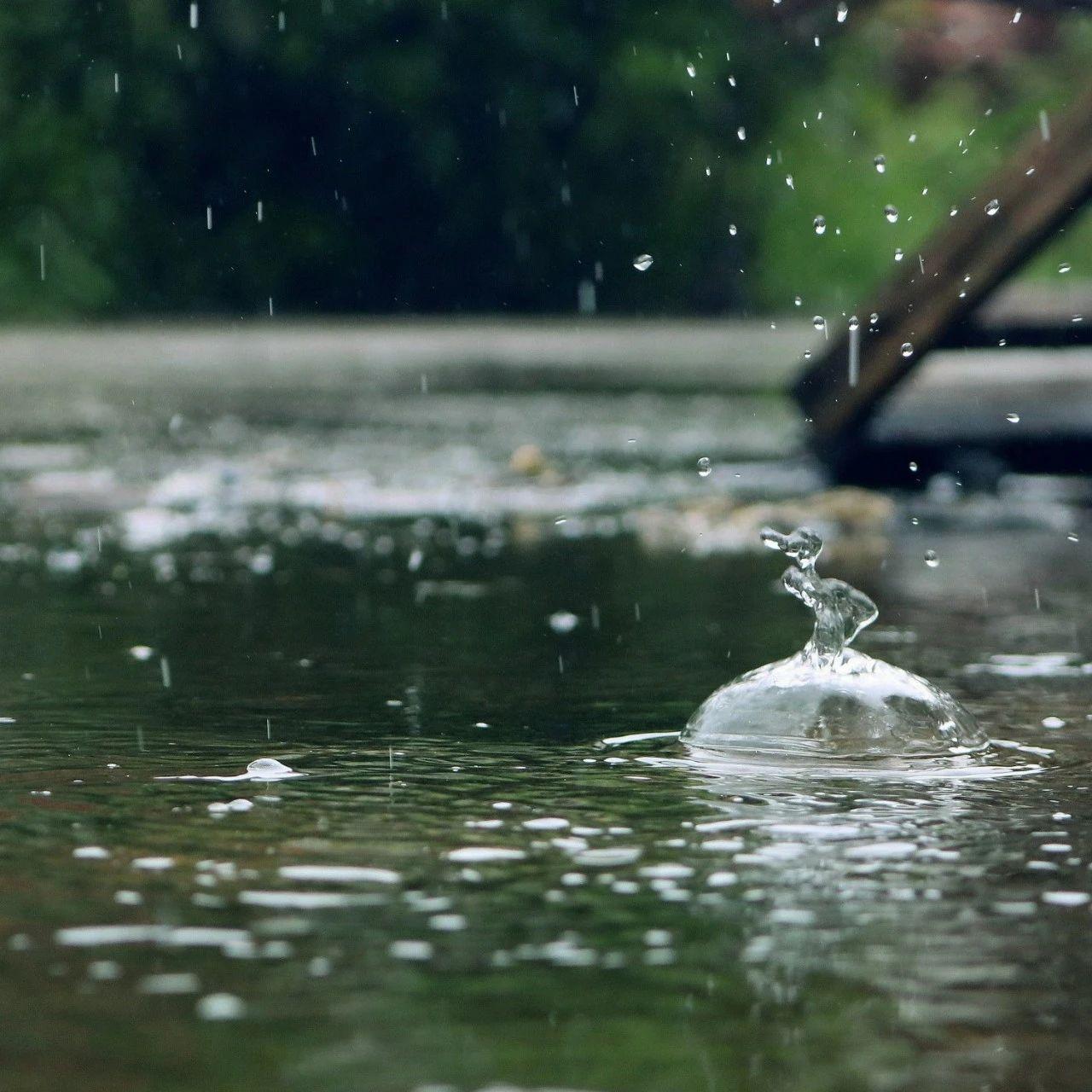 趣活潜江丨雨水叮咚