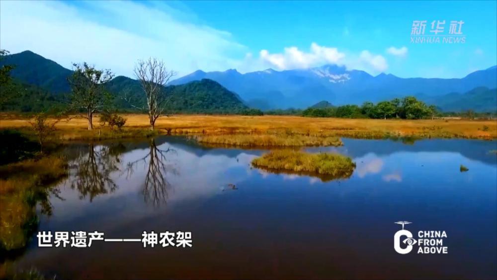 瞰中国·世界遗产丨神农架