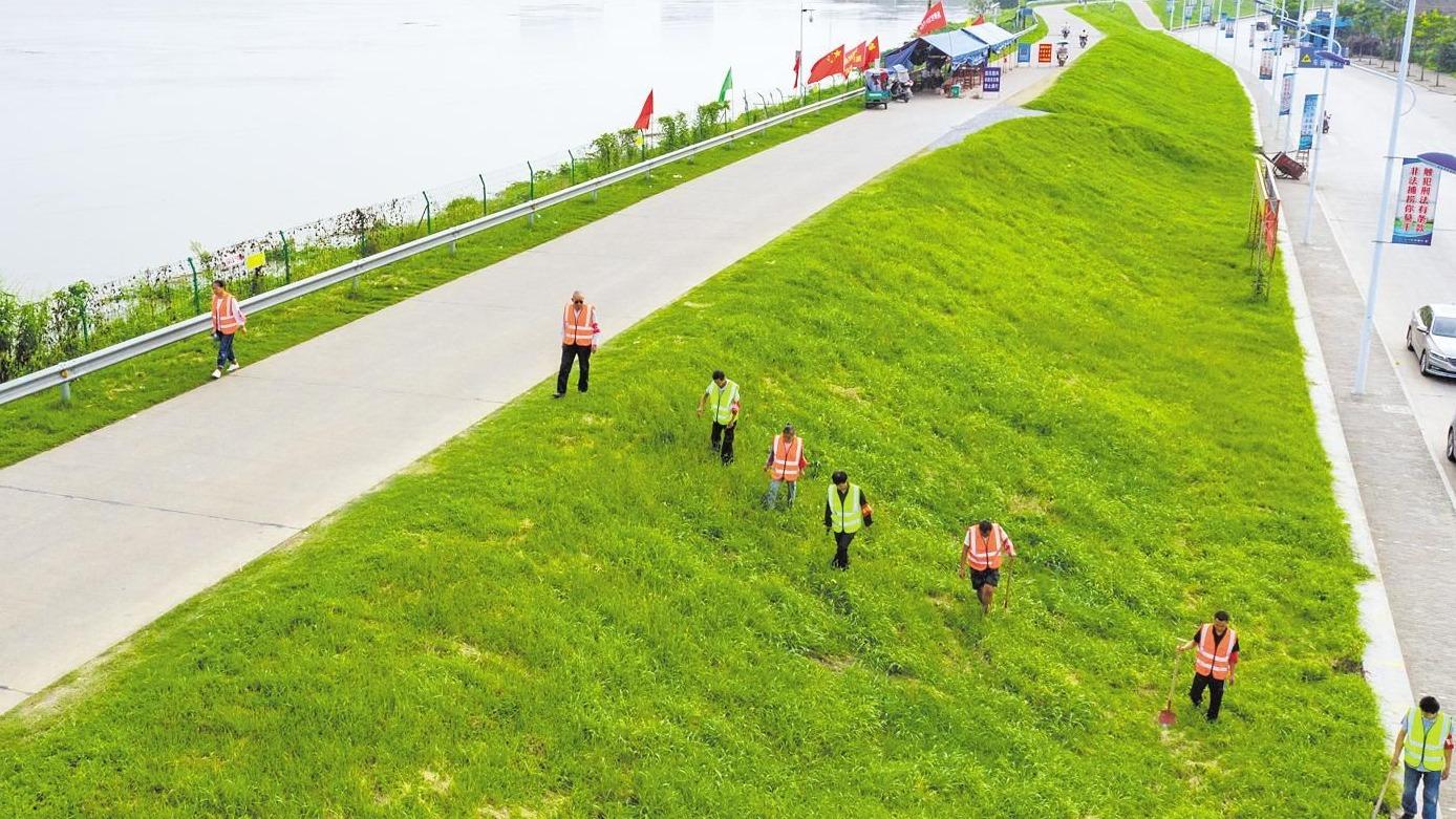 汉川市:值守志愿者拉网式巡查江堤