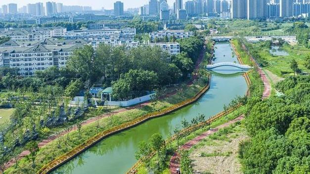 武汉湖溪河:水清岸绿 鱼翔浅底