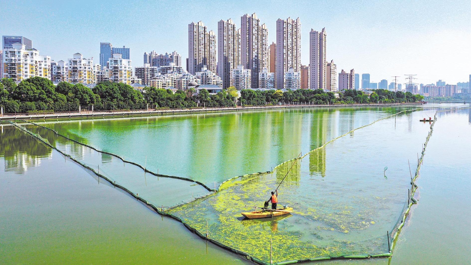 南湖加快水环境提升