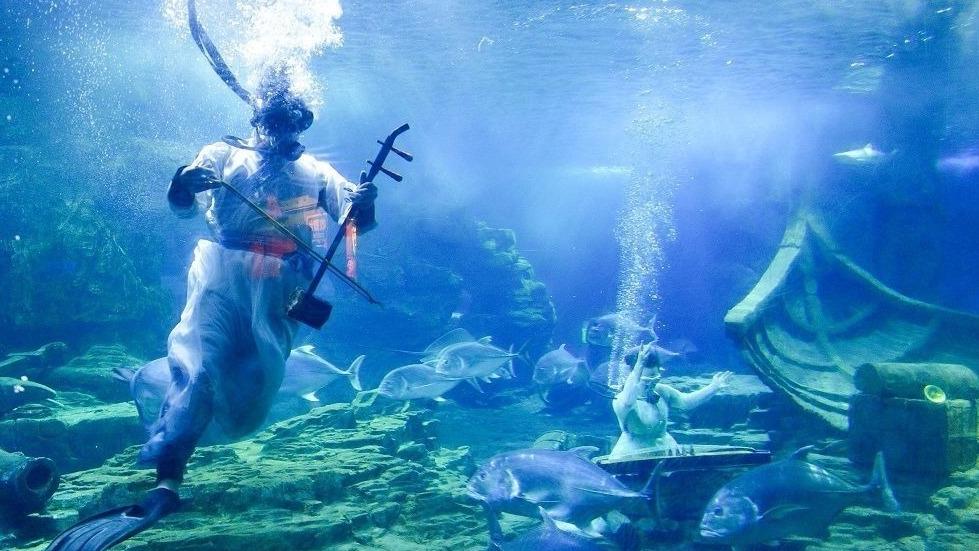 水下演奏?國慶假期東湖海洋樂園又上新