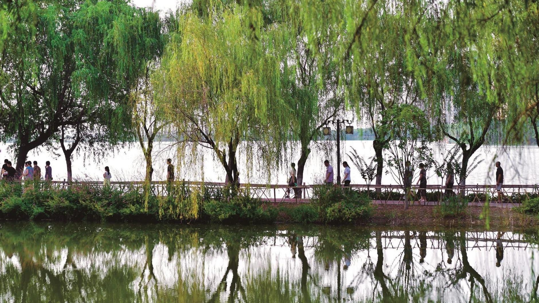 武汉打造湿地花城新名片