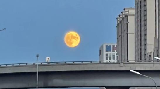 刷屏啦!金色圆月高挂北京夜空,你看到了吗?
