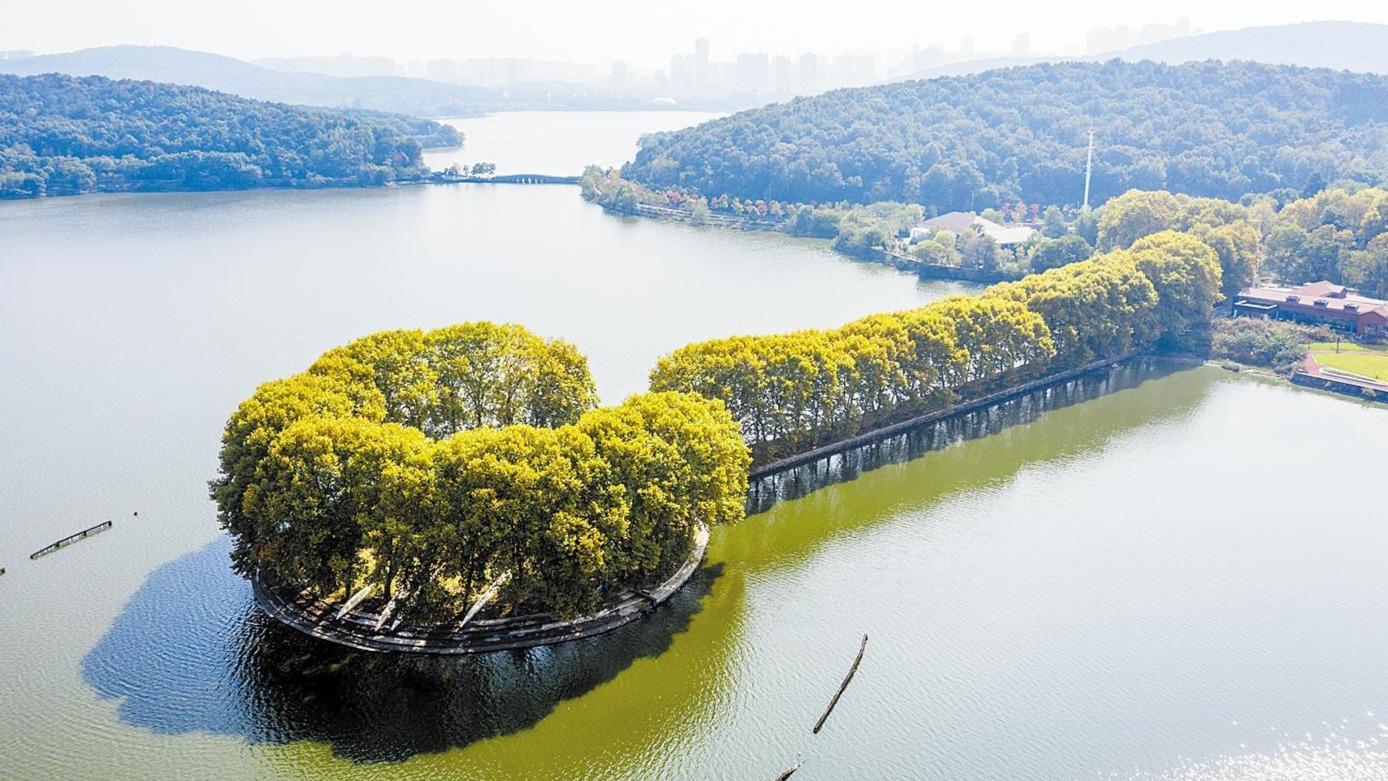 東湖秋色美如畫