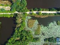 一个黎族自治县聚集四个国家级公园 这是哪里?