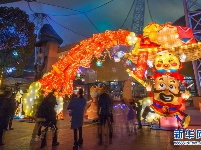 无人机带你看武汉东湖新春灯会