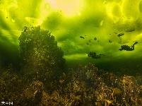 潜水员探索冰下海底世界 如临外星