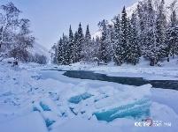 [高清组图]冰雪中的喀纳斯河 多一份纯净多一分浪漫