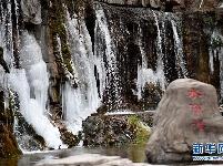 河南云台山现冰瀑景观