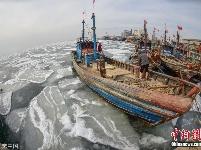 山东烟台莱州湾海冰初现