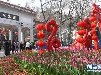武汉解放公园花卉展 | 游园贺新春