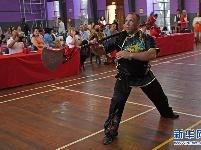 南非武术邀请赛在约翰内斯堡举行