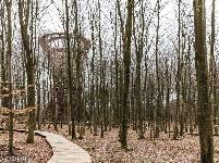 丹麦45米高森林观景塔亮相,螺旋楼梯超精美