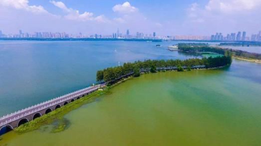 """中央環保督察問題整改 這些河湖長被""""提醒"""""""