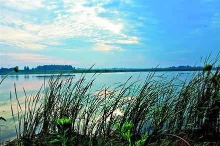 昔日臭水塘變身國家級濕地公園 沙洋3億元治理潘集湖