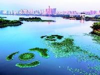 三角湖水环境治理初见成效
