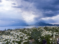 【新疆是个好地方】赛里木湖,那一抹沁人心脾的蓝