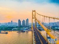 """""""金色巨龙""""航拍完成涂装的武汉杨泗港长江大桥"""
