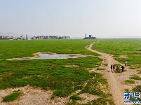 鄱阳湖进入枯水期