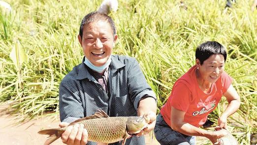 湖北省各地欢庆农民丰收节
