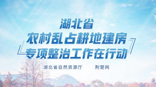 湖北省农村乱占耕地建房专项整治工作在行动