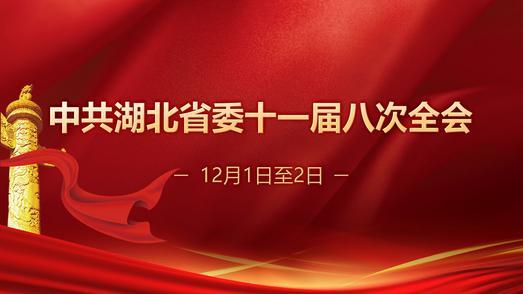 中共湖北省委十一届八次全会