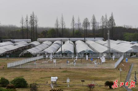 天氣數據怎么來的?跟隨記者探訪武漢氣象觀測站漲知識